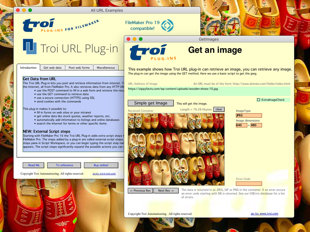 Get image with Troi URL Plug-in