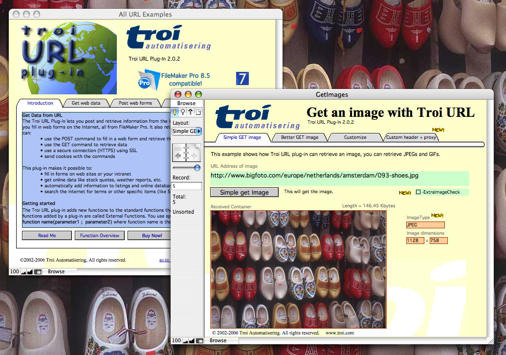 Get an image from the web into FileMaker Pro container